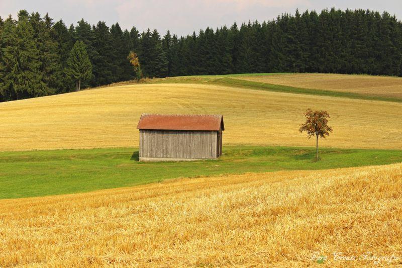 Eine Landschaft im Mittelgebirge